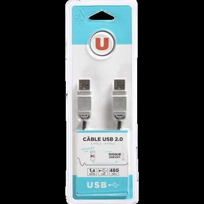 Câble USB U 2.0 A M/M, 1,80m, version high speed