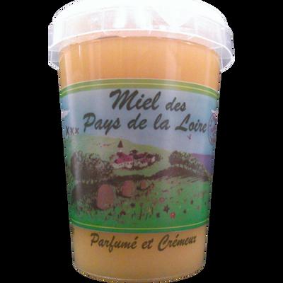 Miel mille fleurs des Pays de la Loire MELLI OUEST, pot de 500g