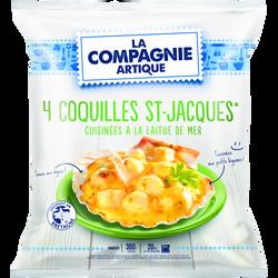 Coquille St Jacques à la laitue de mer COMPAGNIE ARTIQUE, 4x90g