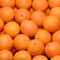 Orange pour jus, Valencia Late, vrac, calibre 7, Afrique du Sud
