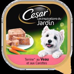 CESAR les inspirations du jardin veau et carottes pour chien, barquette de 300g