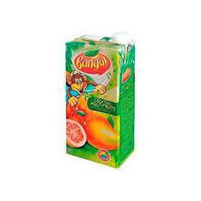 BANGA cocktail multifruits, brique de 2l