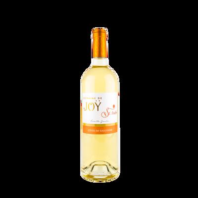 Côtes de Gascogne blanc IGP Domaine de Joy St André, 75cl