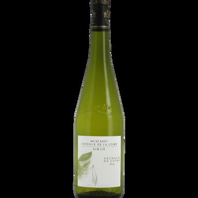 """Muscadet Côteaux de Loire sur Lie """"Pêcheur de Loire"""", bouteille de 75cl"""