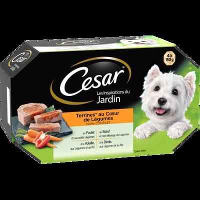Barquettes pour chien en terrine coeur de légumes CESAR, 4x150g