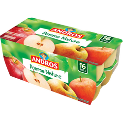 Dessert fruitier pomme nature ANDROS, 16x100g