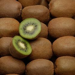 Kiwi vert Montcap, BIO, calibre 46, France