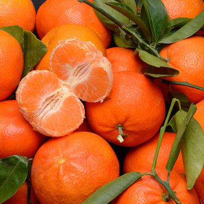 Mandarine clémenvilla, BIO, calibre 1/2, catégorie 2, Espagne