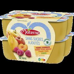 Compote sans sucre ajouté pomme/poire/framboise/pêche/abricot MATERNE,12x100g