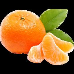 Mandarine Orri, calibre 1-X, catégorie 1, Israël