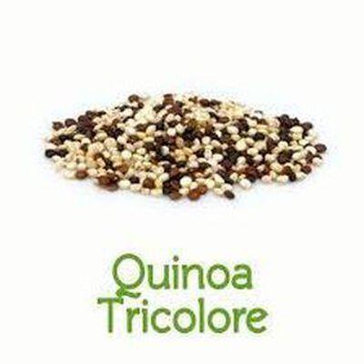 Quinoa tricolore bio vrac