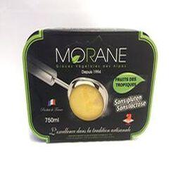 Glaces Fruits des Tropiques MORANE (Glaces végétales des Alpes)