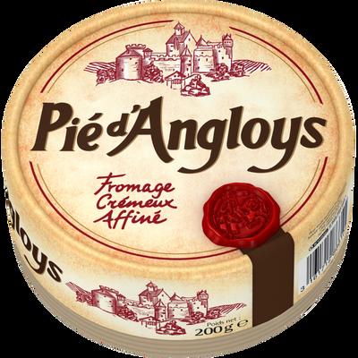 Fromage au lait pasteurisé PIE D'ANGLOYS, 31%MG, 200g