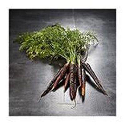 carotte violette