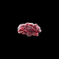Cranberries, BIO, Etats Unis