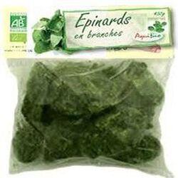 Epinard branche en galet, AquiBio