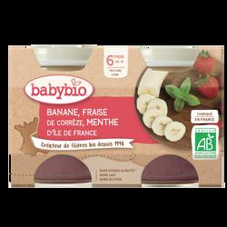 Pot banane fraise menthe BABYBIO, dès 6 mois, 2x130g