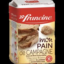 Préparation pour pain de campagne, FRANCINE, source de fibres et de protéines, 1,5kg