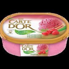 Sorbet plien fruit framboise CARTE D'OR, bac de 650g