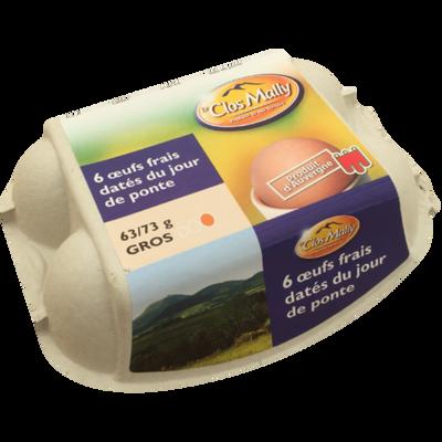 Gros oeufs date du jour de ponte Auvergne sans OGM *6