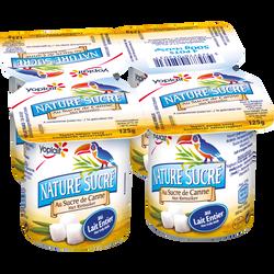 Yaourt nature au sucre de canne YOPLAIT, pack de 500g