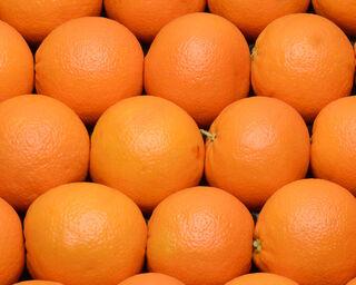 Orange Navelate, TOUJOURS, calibre 4, catégorie 1, non traitée après récolte, Espagne à la pièce