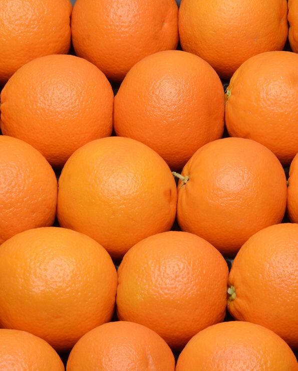 Orange Navelate, TOUJOURS, calibre 4, catégorie 1, non traitée après récolte, Espagne