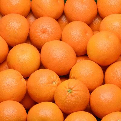 Orange navel, calibre 3, catégorie 1, Afrique du Sud