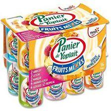 Yaourt Panier Yoplait Mixés aux fruits  X16
