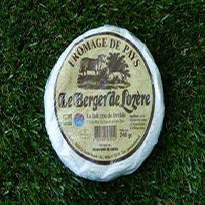 BERGER DE LOZERE      240G