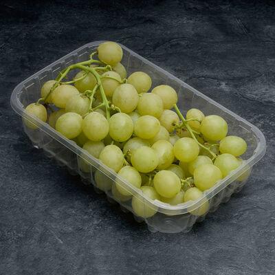 Raisin blanc sans pépin, catégorie 1, Espagne, barquette 500g
