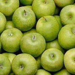 Pomme Granny origine france categori 1 variete granny ferro