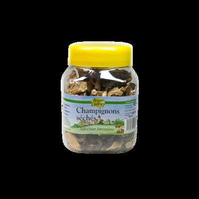 Selection Forestière champignons sèchés R.DUTRUY, pot 100g