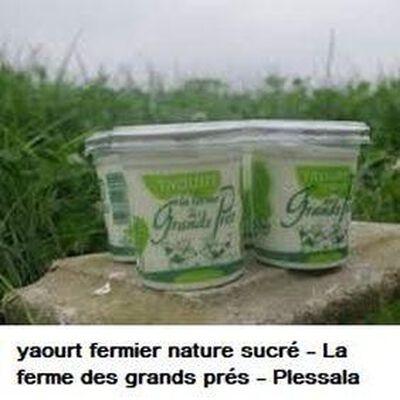 Yaourt fermier nature sucré La ferme des grands prés 125g