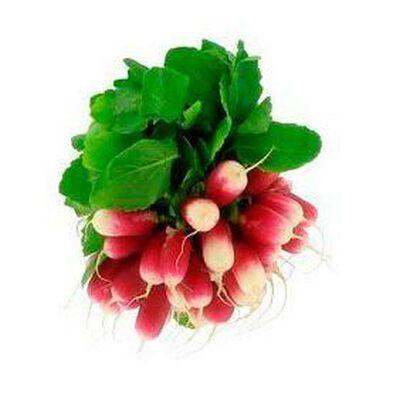 Radis Roses Botte