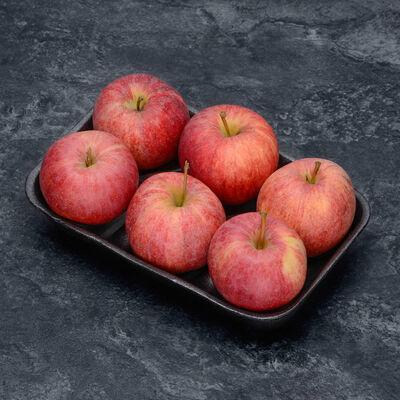 Pomme Jonagold, calibre 136/180, catégorie 1, France, barquette 6 fruits