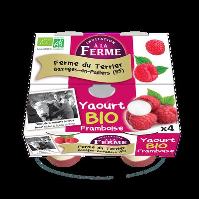 YAOURT A LA FRAMBOISE X4