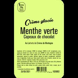Crème glacée menthe verte copeaux de chocolat LA TURBINE A SAVEURS, bac 1 litre