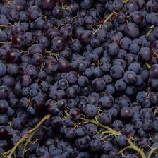 Raisin noir muscat, catégorie 1, France