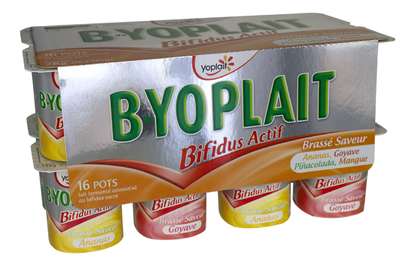 BdeYoplait Fruits Jaunes x 16