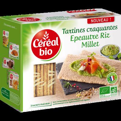 Tartines craquantes épeautre riz millet, CEREAL BIO, 145g