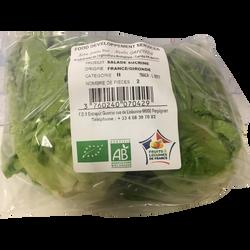 Salade sucrine, BIO, catégorie 2, France, sachet 2 pièces