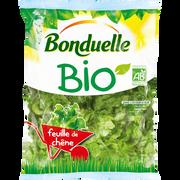 Bonduelle Feuille De Chêne, Bio, Bonduelle, Sachet 100g