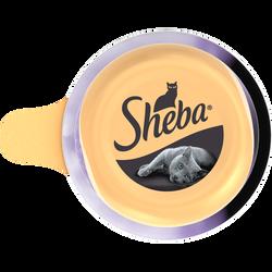 Aliment pour chat Dôme au thon et crevettes SHEBA, 80g
