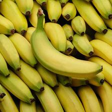 Banane cavendish, BIO, catégorie 2, République Dominicaine