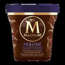 Créme glacée praline noisette MAGNUM pot 400ml