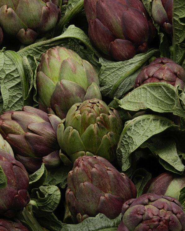 Artichaut, Italie, le bouquet