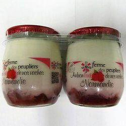 YAOURT FERMIER FRAMBOIS 2X125G