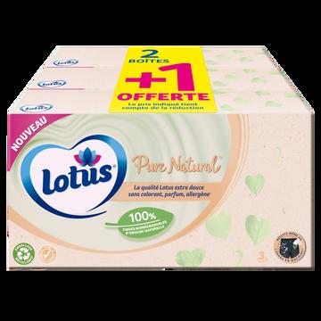 Lotus Mouchoirs Compact Pure Blanc Fsc Lotus, 80 X2+1 Offert