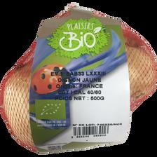 Oignon jaune, BIO, calibre 50/70, France, filet 500g